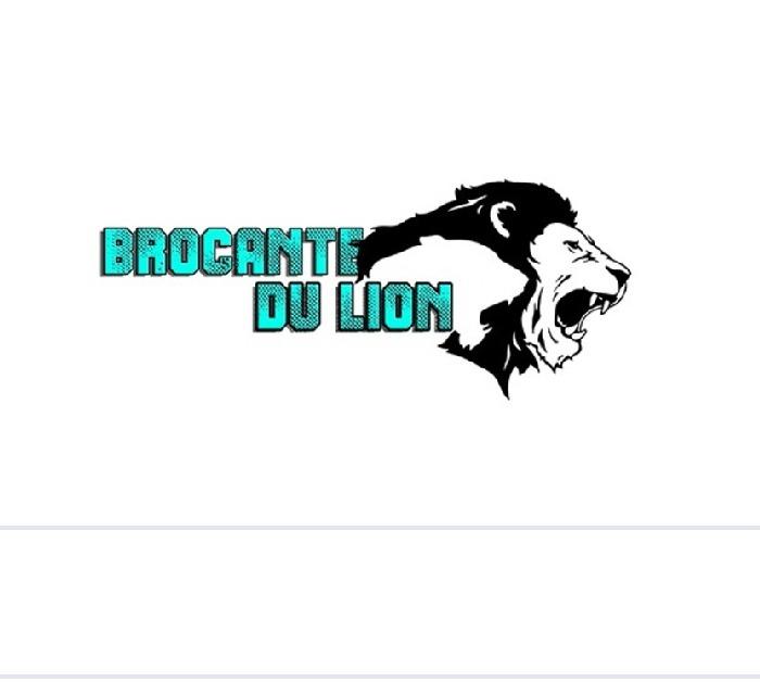 brocante du lion